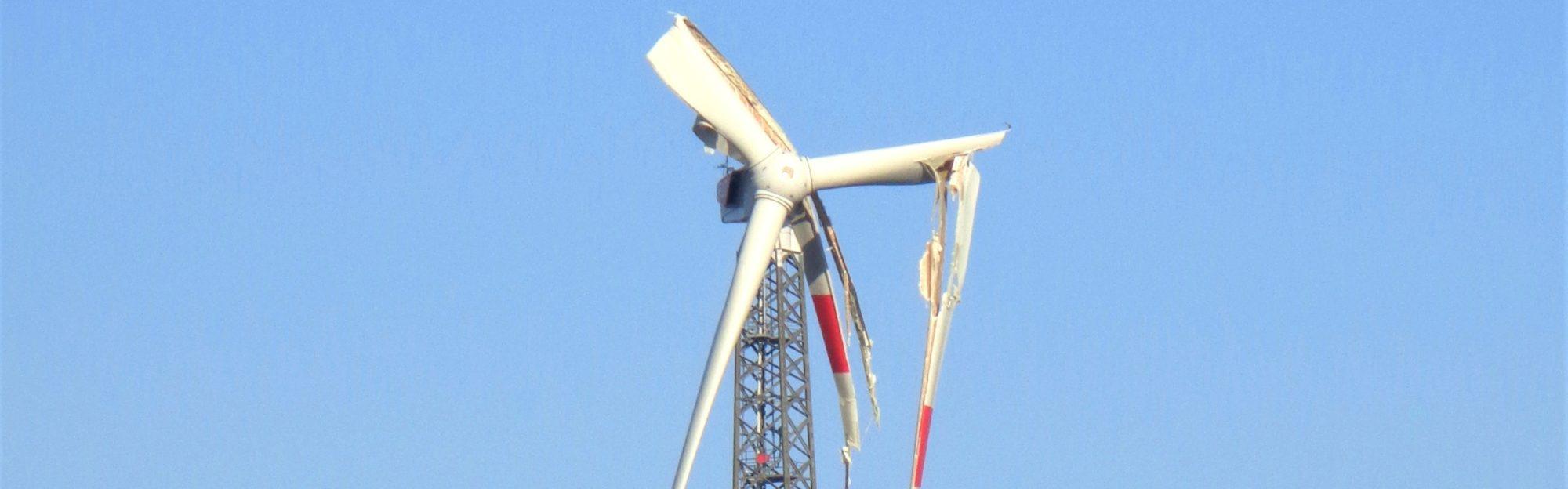 der Energierealist